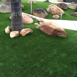Commercial Landscaping Perth -path-turf-lighting