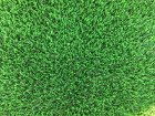 Artificial Grass Perth - Spring - Thumb