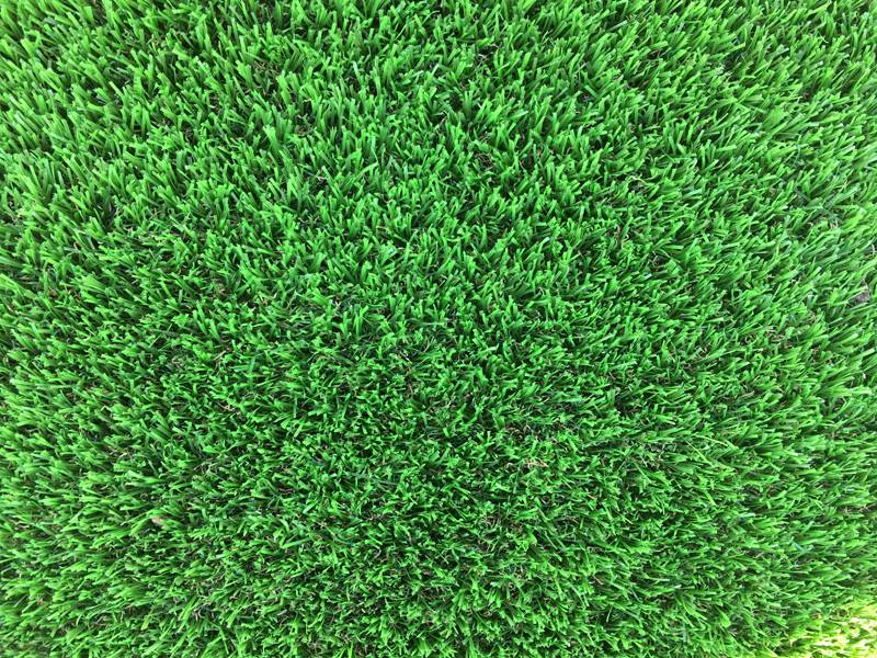 Artificial Grass Perth - Spring - Zoom