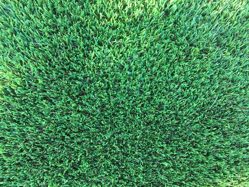 Artificial Grass Perth - Summer - Zoom