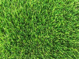 Artificial Grass - Plush - Zoom